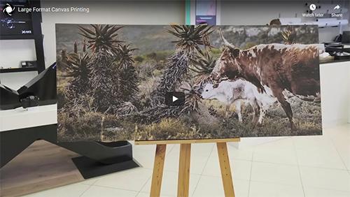 Photoquip Large Format Canvas Printing
